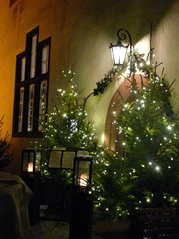 kinder der kita laubfrosch schm cken tannenbaum im schlosspark weihnachtszeitreise bad. Black Bedroom Furniture Sets. Home Design Ideas